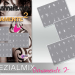 Spezialmix ORNAMENTE II 2
