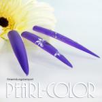 violet02