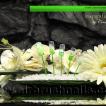 Nails Airbrush Schablonen BL4220