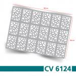 CV6124s